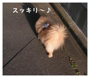 スッキリ~♪