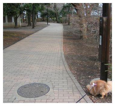 公園の中♪