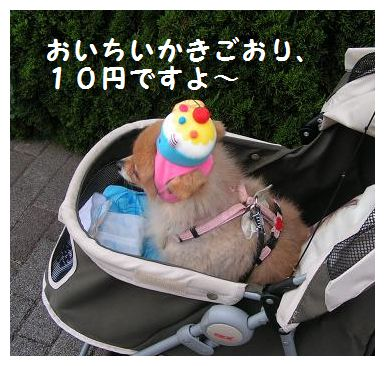 10円だよ~