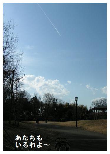 飛行機雲~4