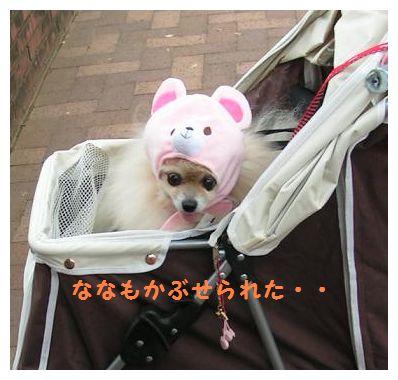 ななちゃんもピンクのクマさん