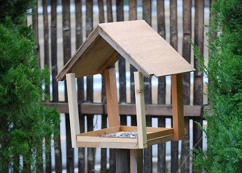 小鳥の餌台