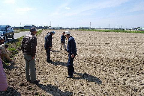麦の種を蒔いた畑