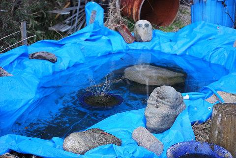 シートを敷いた池