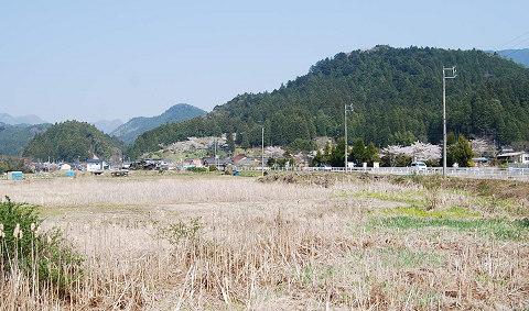 清崎の風景