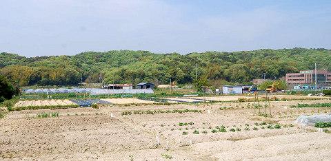 農遊館北の風景