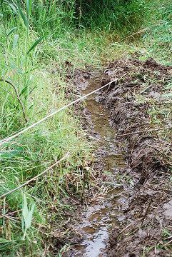 開削した水路