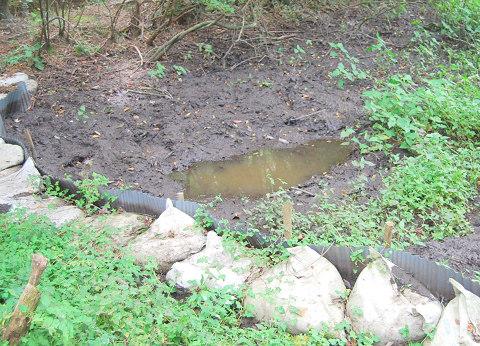 掘った穴に水