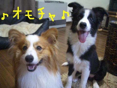 2008.9.17  ★大運動会★ 020   ☆