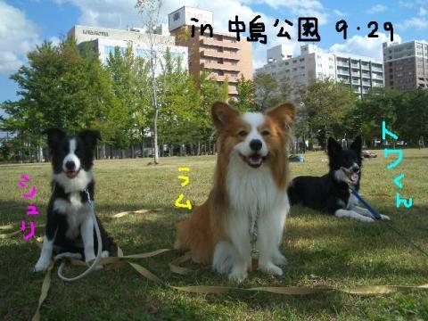 トワ君と中島公園9・29 028   ☆