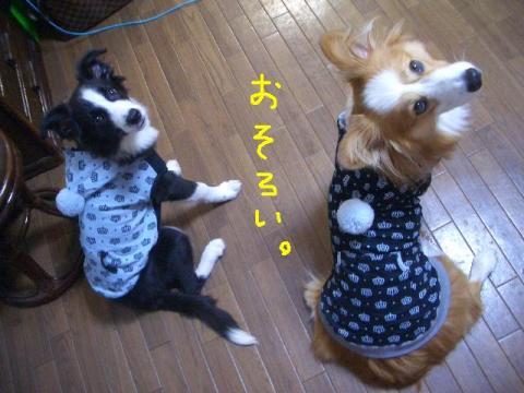 三人お揃いボンボンパーカー☆ 016   ☆
