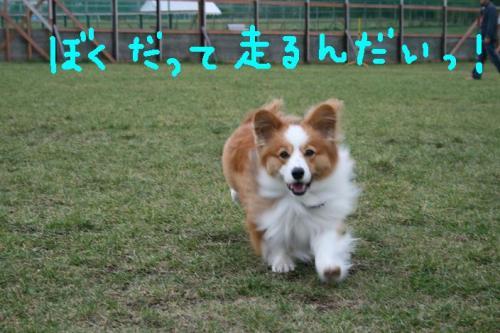 ★2008・10・10グリド★ 014   ☆