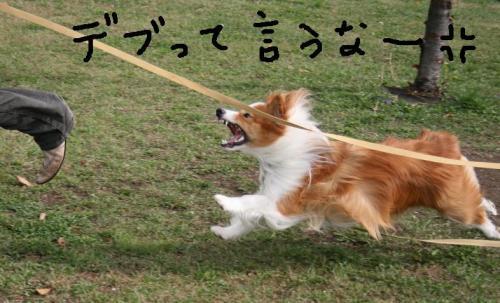 中島公園 10・14 048   ★★