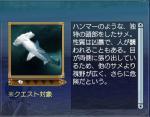 海洋生物:シュモクザメ