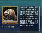 大型生物:ヒグマ
