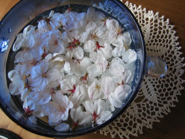桜のスープ