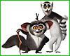 mada_lemur