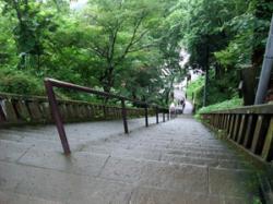 春日山神社の階段。