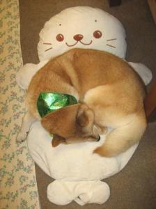 クリスマスカラー☆男の子