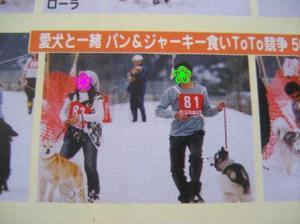犬そり会場4