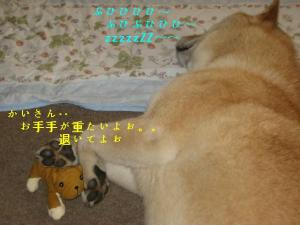 ぶひちゃん2