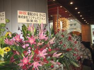 コムちゃんのお花♪