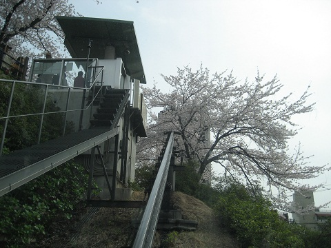 0410ASUKA13.jpg