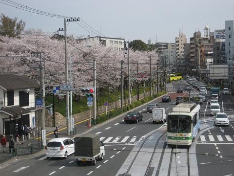 0410ASUKA8.jpg