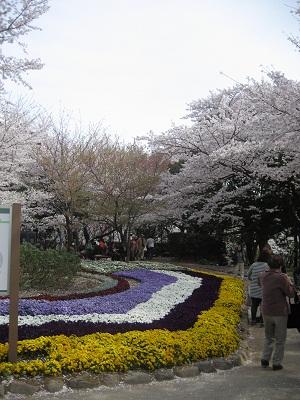 0410ASUKA9.jpg