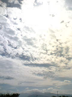 06-10-08_13-15.jpg