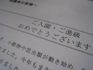 IMG_9041.jpg