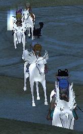 馬トレイン