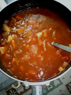 料理 2009年3月29日 ビーフシチュー