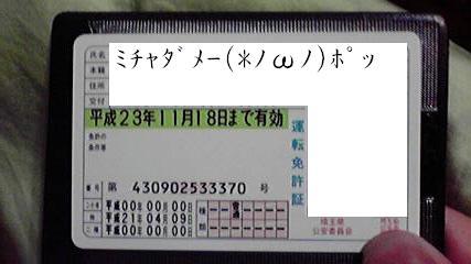P1000429.jpg
