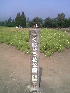 花公園(その2)