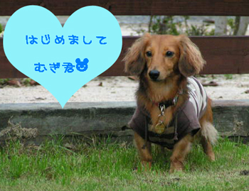 PICT0332.jpg