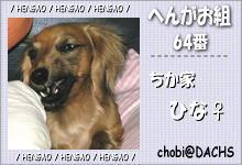 card_064.jpg