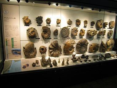 国立科学博物館07
