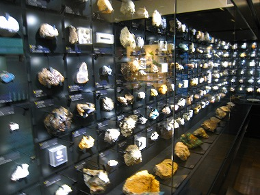 国立科学博物館15