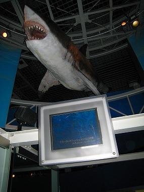 国立科学博物館25