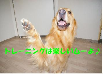 看板犬のムーヴ先生