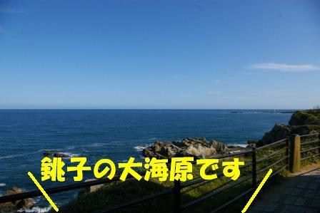 IMGP7963.jpg