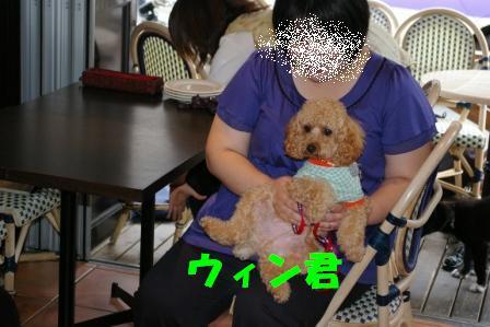 IMGP8142.jpg