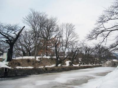 3月8日(木)の天気