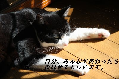 IMG_6139.jpg