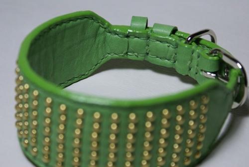 ライトグリーンデザイン首輪