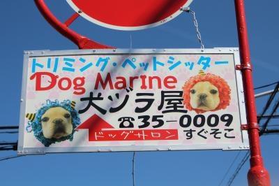 犬のカツラ〔犬ヅラ〕看板