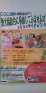 20090727155136.jpg