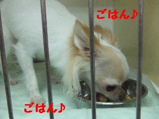 2008_08120069.jpg