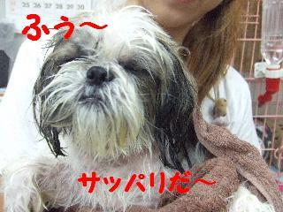 2008_08190059.jpg